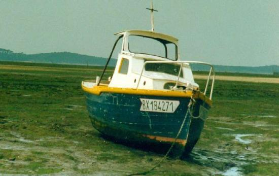 En bordure de la côte