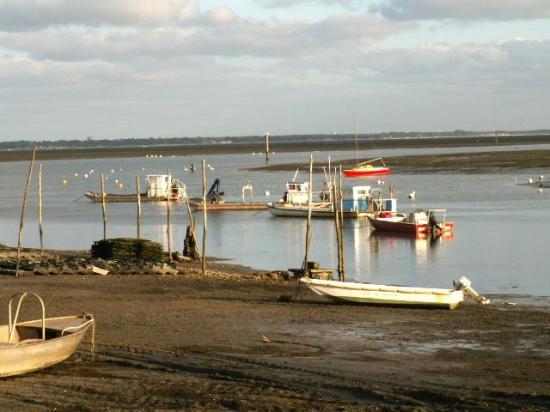 Toujours le Bassin...